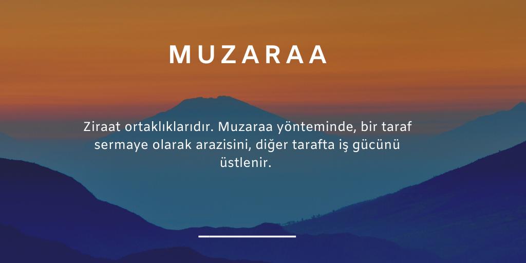 MUZARAA NEDİR?